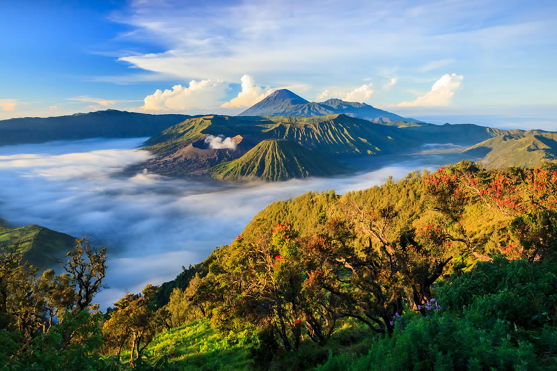 The Mountain Peaks of Bromo Tengger Semeru 2018